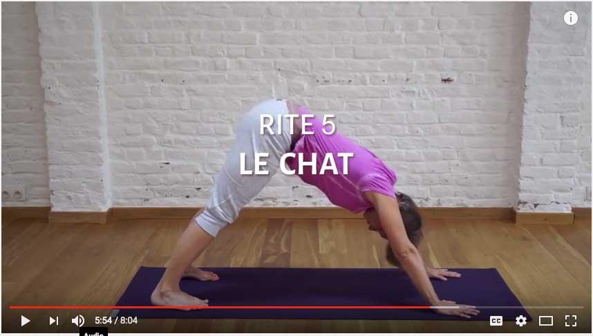 Les 5 tibétains exercices : la posture du chat stimule votre système hormonal
