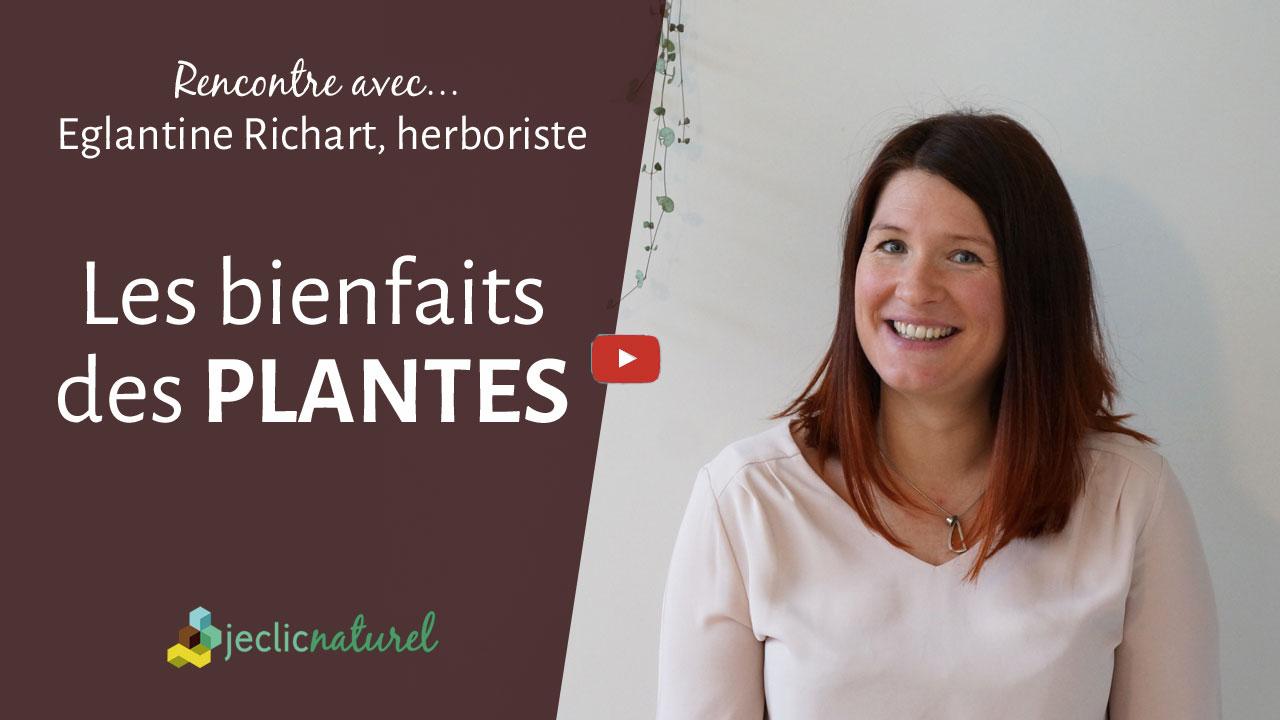 Le bon usage des plantes par Eglantine, herboriste