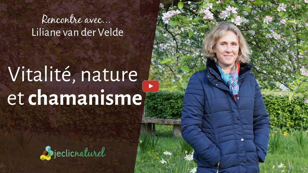 Comment retrouver le lien avec la nature pour retrouver sa vitalité