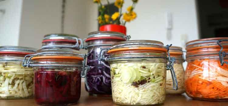 Apprendre faire légumes lacto-fermentation