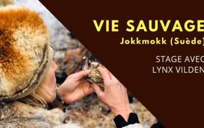 """10 jours de """"Vie Sauvage"""" avec Lynx Vilden"""